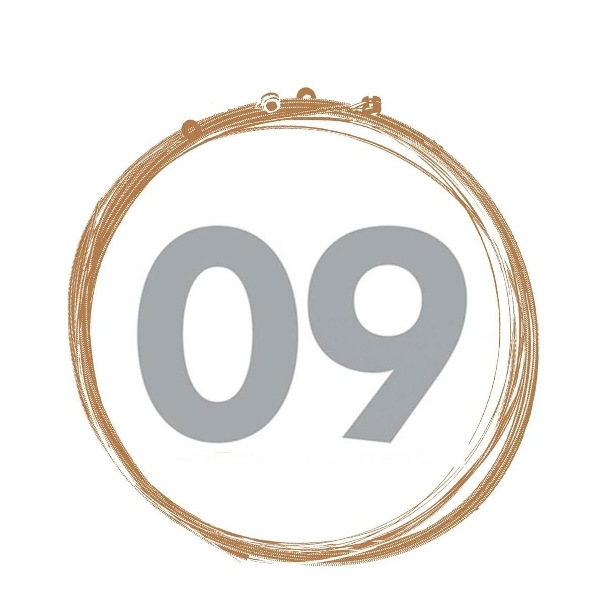 .009 D'ADDARIO SETS