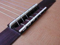 Benen Brugzadel Klassieke Gitaar - Rosette Classical Guitar Bone Saddle